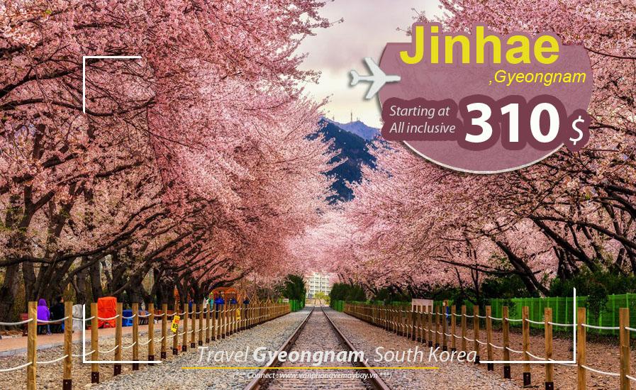 Đặt vé máy bay đi Gyeongnam (Hàn Quốc) giá rẻ