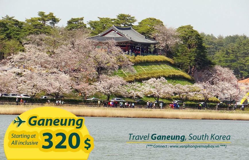 Đặt vé máy bay đi Ganeung (Hàn Quốc) giá rẻ