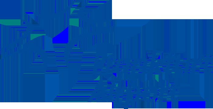 Franfurt airport logo